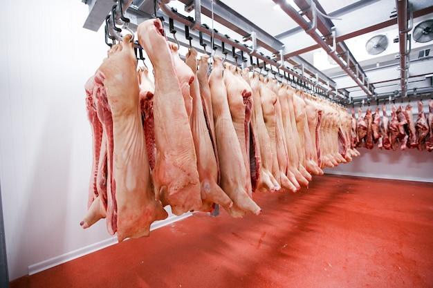 Molta carne di suino cruda fresca tritata appesa e disposta e lavorata depositare in frigorifero, in un salumificio.