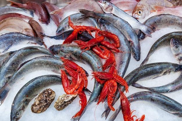 Un sacco di pesci, gamberi e ostriche si sdraiano sul ghiaccio al mercato del pesce, malta