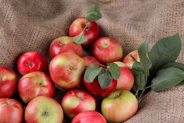 Un sacco di mele rosse mature fresche con foglie in saccheggio. raccolto. frutta