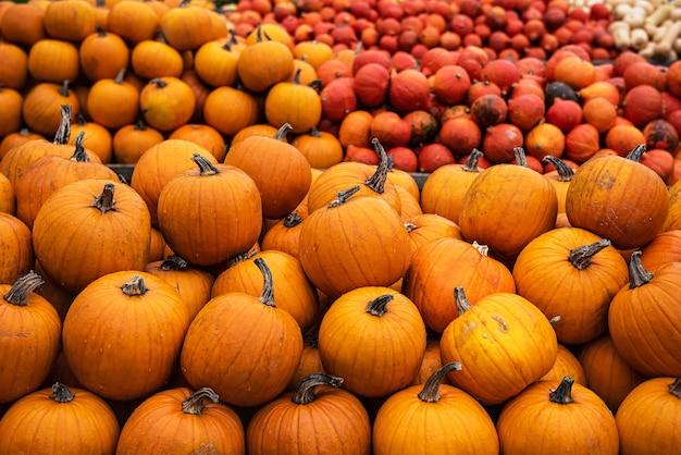 Un sacco di zucche arancioni in mostra al mercato degli agricoltori