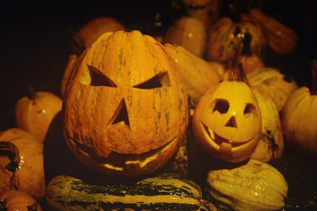 Molte zucche per halloween, vicino della lanterna di jack