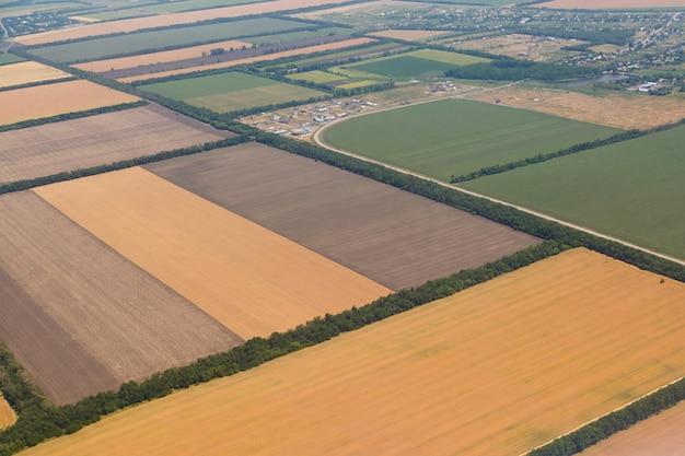 Molti campi gialli prima della raccolta