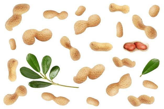 Molte arachidi con la buccia