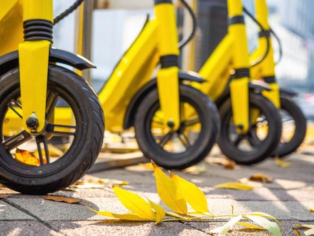 Un sacco di scooter gialli e foglie di autunno gialle, primo piano. noleggio, noleggio di scooter elettrici, comodi mezzi di trasporto
