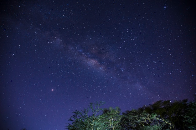 Bella via lattea di notte al campeggio naivasha. kenya