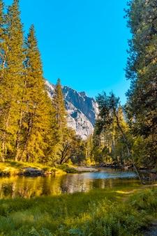 Bella passeggiata per passeggiare nella valle di yosemite. california, stati uniti