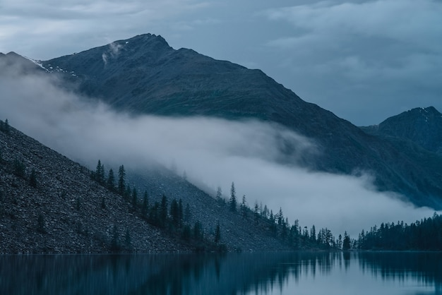 Nuvole basse sopra il lago dell'altopiano. sagome di alberi sulla collina lungo il lago di montagna in una fitta nebbia. riflesso dei pini per calmare l'acqua. tranquillo paesaggio alpino al mattino presto. scenario atmosferico spettrale