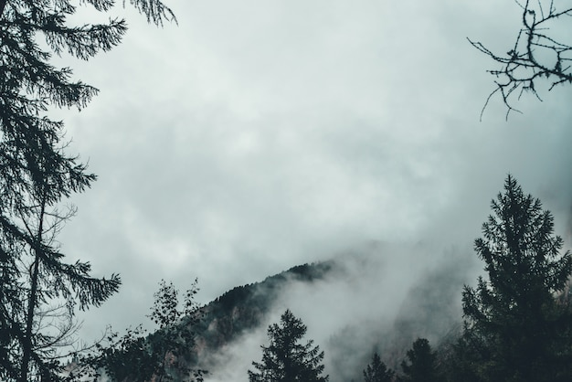 Nuvole basse tra le rocce.