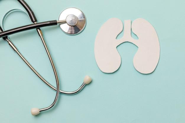 Concetto medico di terapia della salute polmonare. modello di simbolo dei polmoni di design piatto laico, stetoscopio su sfondo blu pastello. malattia respiratoria polmonite tubercolosi bronchite asma ascesso polmonare covid-19.