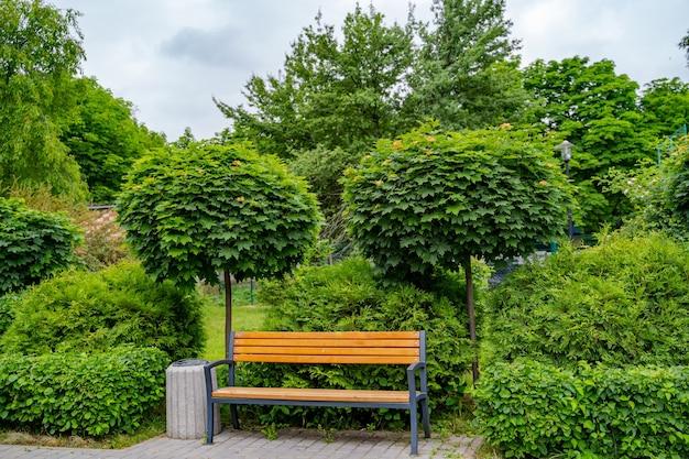 Lussureggiante giardino con paesaggio in pietra, siepe di cespugli e panca. primavera, vista estiva.