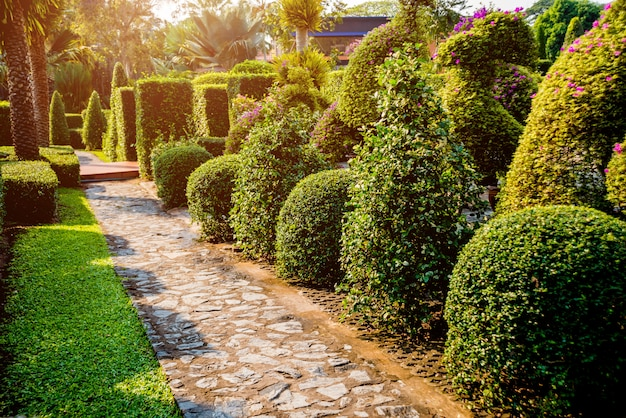 Architettura del paesaggio di lusso del giardino tropicale. bella vista sul paesaggio tropicale