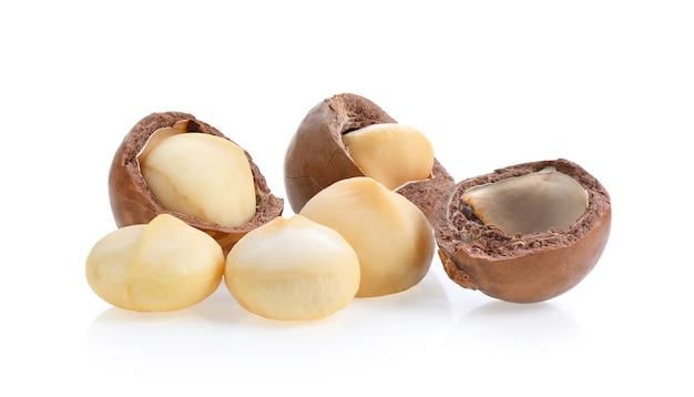 Noce di macadamia su fondo bianco