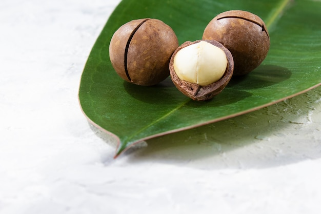 Noci di macadamia su superficie luminosa