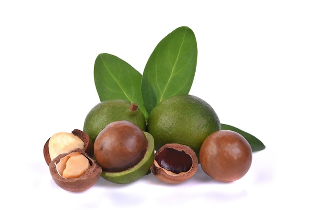 Noci di macadamia isolate su bianco