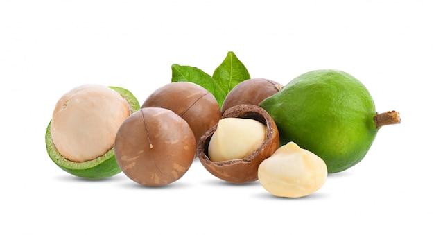 Noci di macadamia con la foglia isolata su bianco.