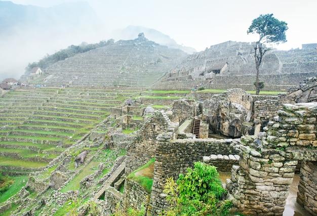 Paesaggio di machu picchu