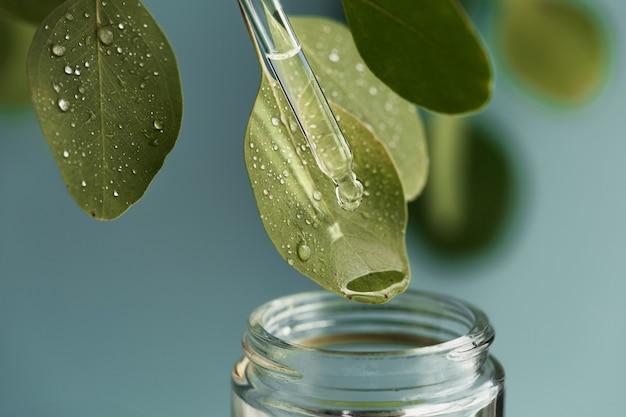 Colpo a macroistruzione di bella foglia e pipetta, goccia della medicina che cade nel barattolo. estratto di olio essenziale di erbe medicinali