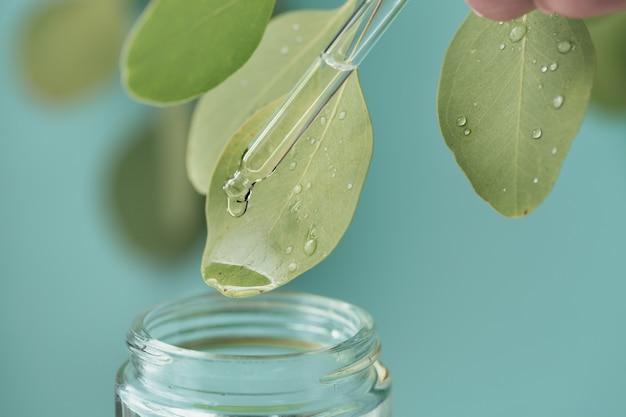 Colpo a macroistruzione di bella foglia e pipetta, goccia della medicina che cade nel barattolo. cosmetici naturali, biologici, bio da erbe e piante per la pelle e la salute