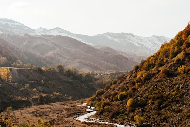 Magia incantevole natura, montagne e colline sono ricoperte di alberi e piante