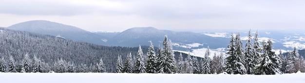 Magico panorama di una bellissima collina tra le montagne coperte di neve