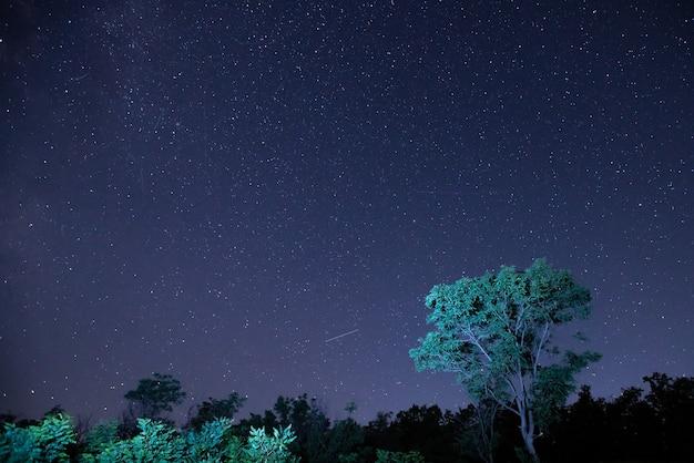 Magica via lattea stellata di notte