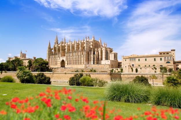 Cattedrale di maiorca e almudaina dal giardino di fiori rossi