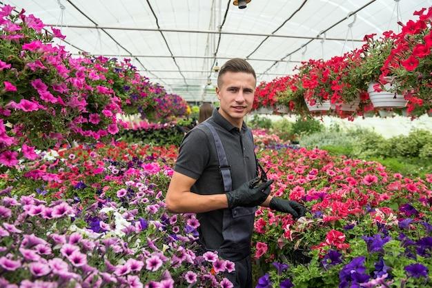 Fiorista maschio che lavora con fiori che sbocciano e altre piante in una serra