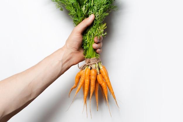 Mano maschio che tiene mazzo di carote fresche su sfondo bianco.