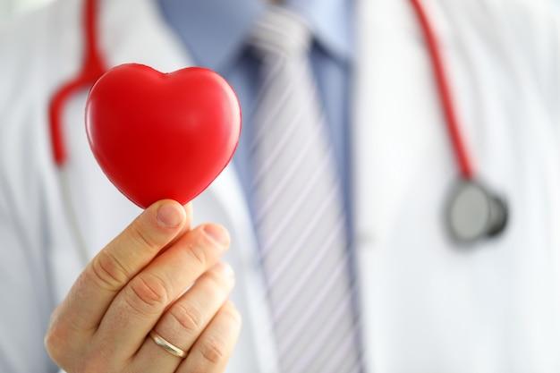 Mani di medico di medicina maschio che tengono e che coprono il primo piano rosso del cuore del giocattolo. cardio terapeuta