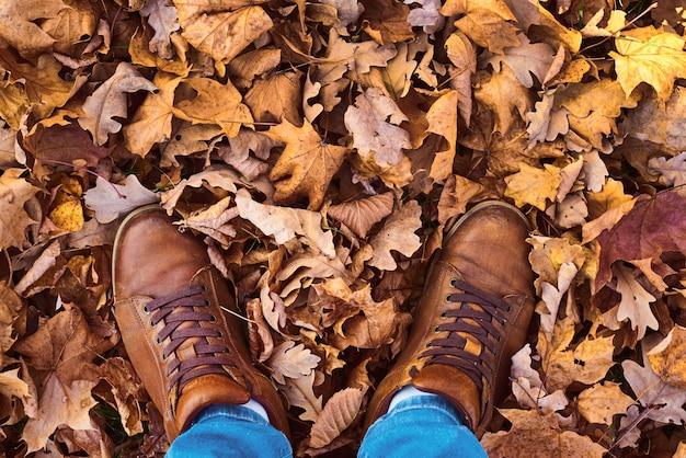 Scarpe maschili su foglie d'autunno di acero