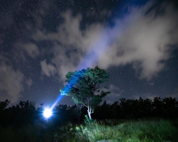Turista maschio in piedi nei boschi e rendendo enorme raggio utilizzando la torcia elettrica sulla testa all'aperto