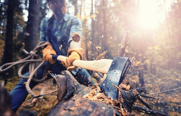 Lavoratore maschio con un'ascia che taglia un albero nella foresta.