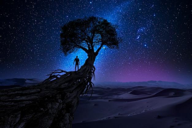 L'uomo di fronte all'universo