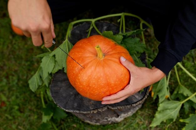 Le mani dell'uomo tagliano la zucca prima di intagliare per halloween, prepara jack o'lantern. decorazione per la festa, vista dall'alto, primo piano, vista dall'alto, copia spazio