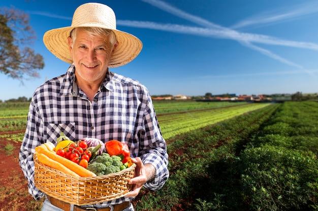 Uomo che tiene il cesto con verdure biologiche sane. sfondo di piantagione.