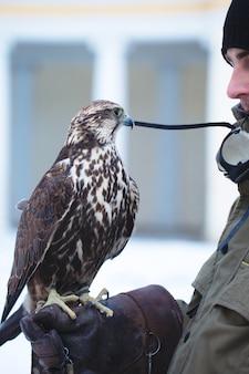 Uomo che tiene un falco sul braccio