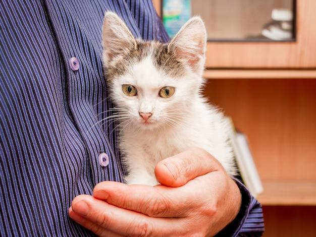 L'uomo tiene in mano un gattino macchiato di bianco con grandi occhi espressivi
