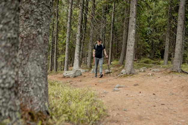Un uomo è un turista in una pineta con uno zaino. una gita nella foresta. riserva di pini per passeggiate turistiche. un giovane in un'escursione in estate.