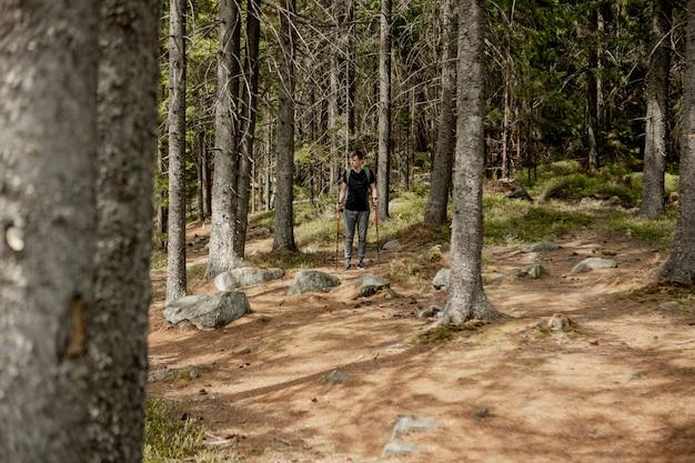 Un uomo è un turista in una pineta con uno zaino. un'escursione nella foresta. riserva di pini per passeggiate turistiche. un giovane in un'escursione in estate.