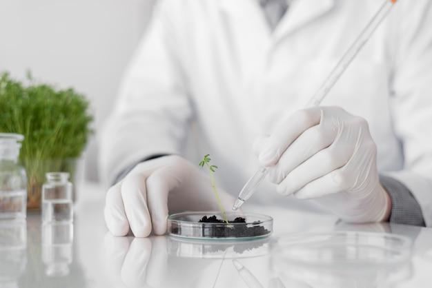 Uomo in laboratorio facendo esperimenti da vicino sul germoglio