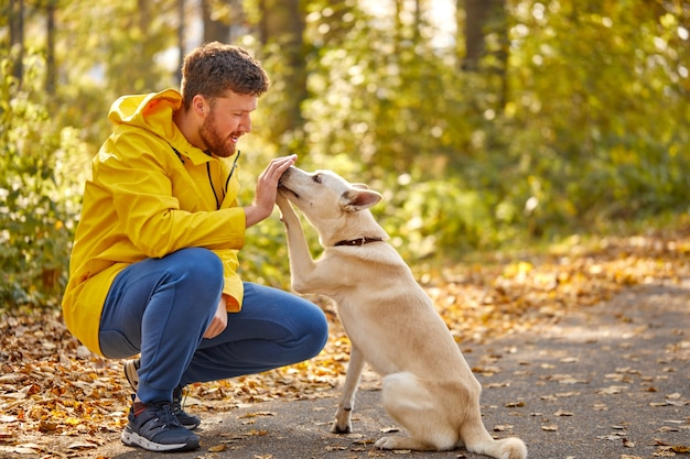 L'uomo gioca con un bel cane da compagnia nella foresta
