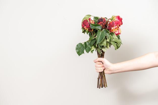 La mano dell'uomo porge un mazzo di fiori appassiti. rose rosse secche e una copia dello spazio