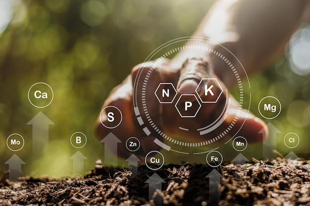 La mano di un uomo sta toccando la terra con la tecnologia, un'icona sugli elementi necessari per piantare un albero.