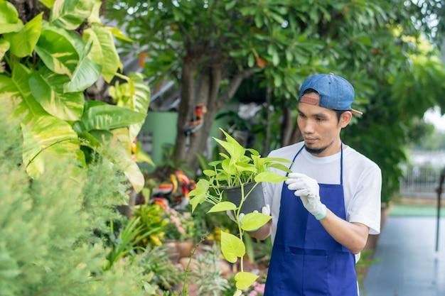 L'uomo vende il giardino delle piante in negozio