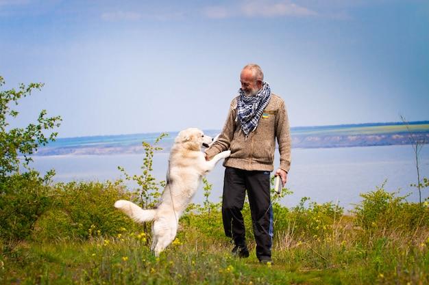 Cane del husky siberiano e dell'uomo in natura
