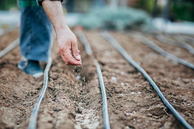 Un uomo semina i semi nel terreno