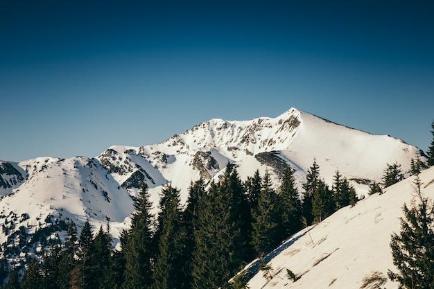 Un uomo in piedi in cima a una montagna coperta di neve