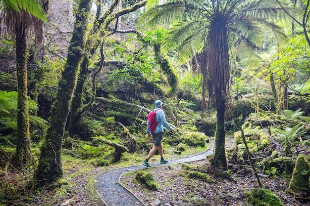 Uomo che cammina sul percorso di escursione con il parco nazionale di mount cook, bella regione di montagne. tramping, escursioni in nuova zelanda.