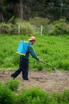 Un uomo che cammina con un pacco di fumigazione tra l'erba medica.