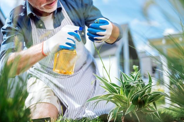 Uomo con diffusore. uomo barbuto che indossa guanti bianchi e blu tenendo il diffusore mentre si spruzza acqua sulle piante verdi